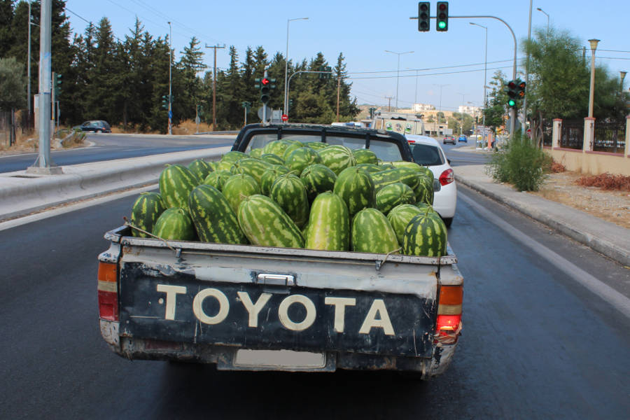 pickup with melons